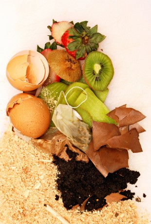 compost image