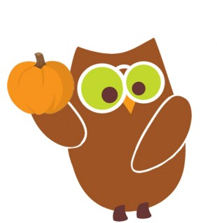 owl with pumpkin